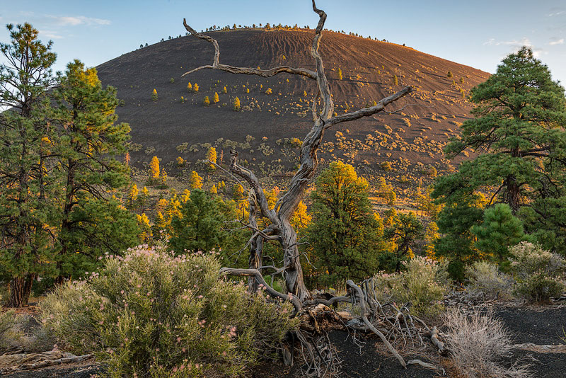 Photo - Sunset Crater at Sunrise